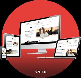 Разработка адаптивного дизайна сайта