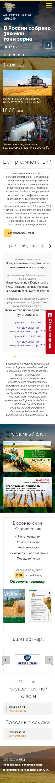 примеры сайтов предприятий Воронежский областной центр информационного обеспечения АПК 320 px